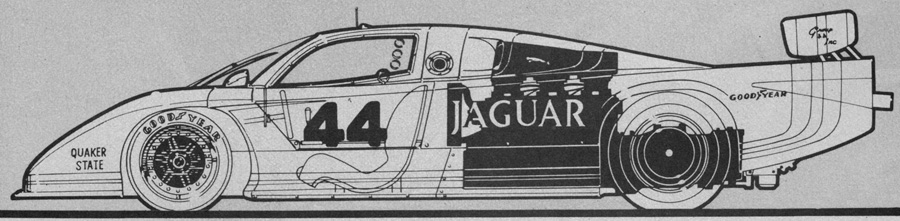 44-jaguar.jpg
